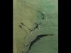 dessin-papier-de-soie-2